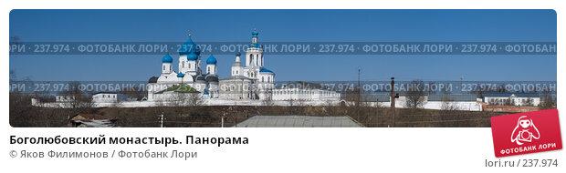 Боголюбовский монастырь. Панорама, фото № 237974, снято 25 февраля 2017 г. (c) Яков Филимонов / Фотобанк Лори