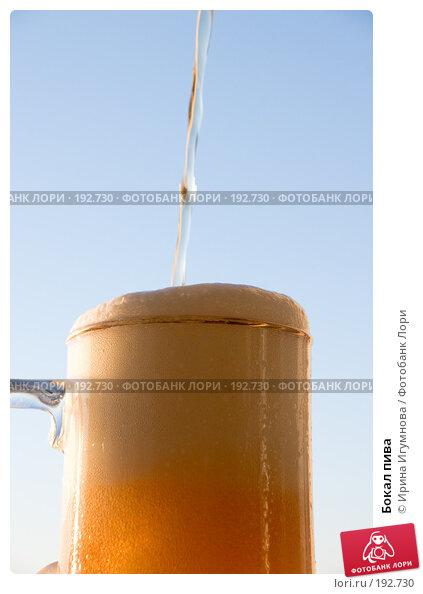 Бокал пива, фото № 192730, снято 8 декабря 2007 г. (c) Ирина Игумнова / Фотобанк Лори