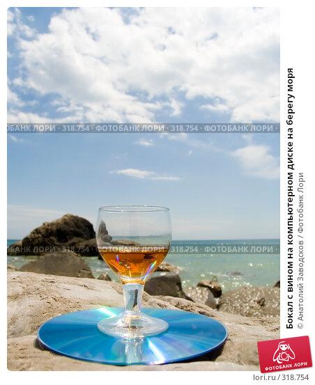 Бокал с вином на компьютерном диске на берегу моря, фото № 318754, снято 27 мая 2006 г. (c) Анатолий Заводсков / Фотобанк Лори