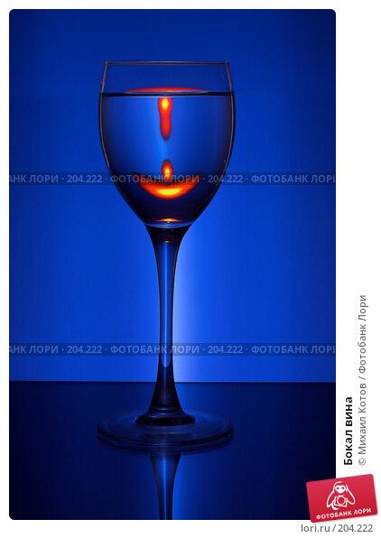 Бокал вина, фото № 204222, снято 25 марта 2017 г. (c) Михаил Котов / Фотобанк Лори
