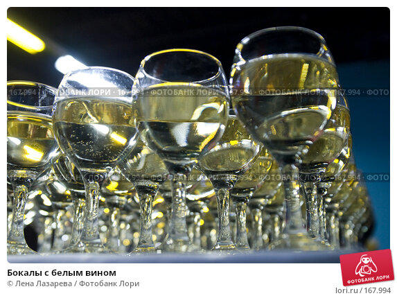 Бокалы с белым вином, фото № 167994, снято 27 декабря 2007 г. (c) Лена Лазарева / Фотобанк Лори