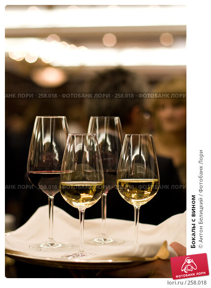 Бокалы с вином, фото № 258018, снято 20 апреля 2008 г. (c) Антон Белицкий / Фотобанк Лори