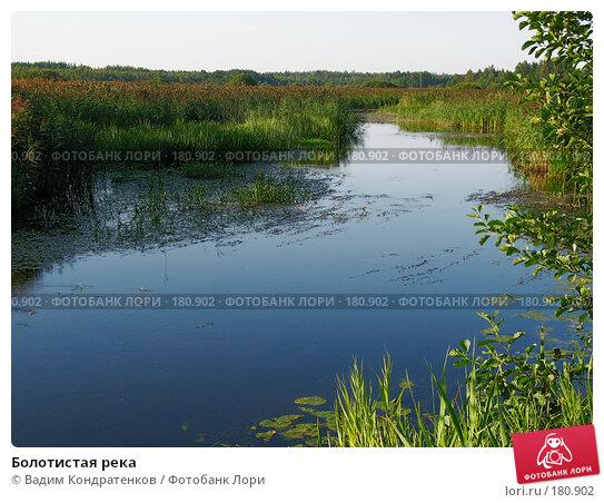 Болотистая река, фото № 180902, снято 23 мая 2017 г. (c) Вадим Кондратенков / Фотобанк Лори