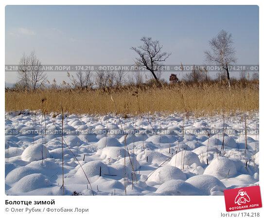 Болотце зимой, фото № 174218, снято 12 января 2008 г. (c) Олег Рубик / Фотобанк Лори