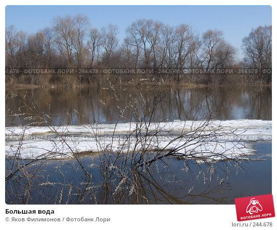 Купить «Большая вода», фото № 244678, снято 29 марта 2008 г. (c) Яков Филимонов / Фотобанк Лори