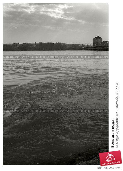 Большая вода, фото № 257194, снято 3 декабря 2016 г. (c) Андрей Доронченко / Фотобанк Лори
