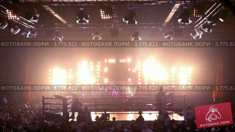 Купить «Большое количество зрителей на шоу, девушки танцуют на сцене», видеоролик № 3775822, снято 30 декабря 2011 г. (c) Losevsky Pavel / Фотобанк Лори