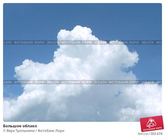 Большое облако, фото № 303674, снято 17 января 2017 г. (c) Вера Тропынина / Фотобанк Лори
