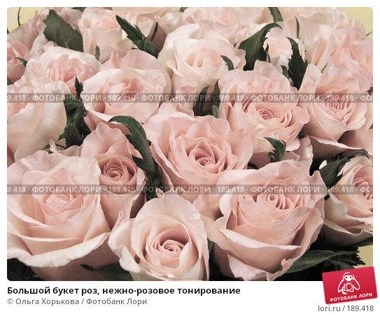 Большой букет роз, нежно-розовое тонирование, фото № 189418, снято 6 декабря 2007 г. (c) Ольга Хорькова / Фотобанк Лори