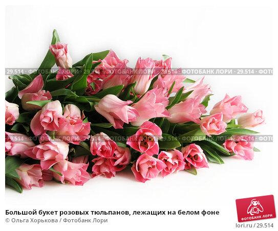 Большой букет розовых тюльпанов, лежащих на белом фоне, фото № 29514, снято 8 марта 2007 г. (c) Ольга Хорькова / Фотобанк Лори