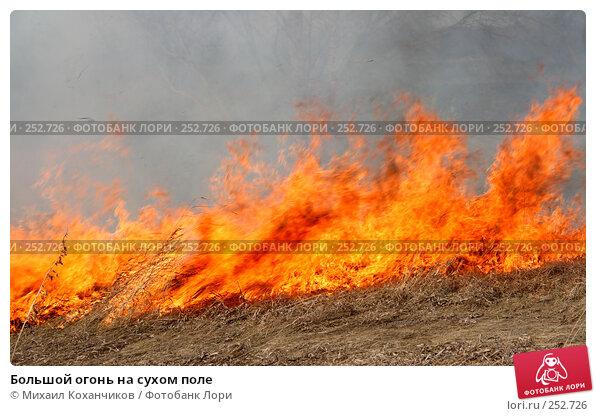 Большой огонь на сухом поле, фото № 252726, снято 12 апреля 2008 г. (c) Михаил Коханчиков / Фотобанк Лори