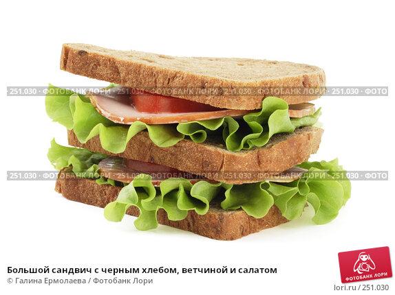Большой сандвич с черным хлебом, ветчиной и салатом, фото № 251030, снято 2 апреля 2008 г. (c) Галина Ермолаева / Фотобанк Лори