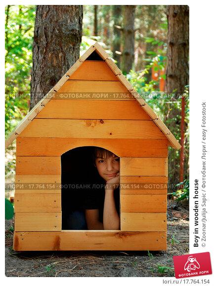 Купить «Boy in wooden house», фото № 17764154, снято 14 ноября 2019 г. (c) easy Fotostock / Фотобанк Лори