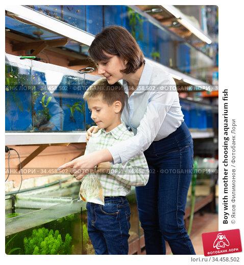 Boy with mother choosing aquarium fish. Стоковое фото, фотограф Яков Филимонов / Фотобанк Лори