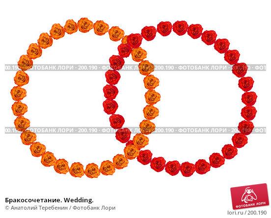Бракосочетание. Wedding., иллюстрация № 200190 (c) Анатолий Теребенин / Фотобанк Лори