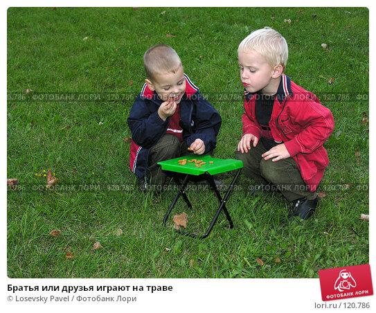 Братья или друзья играют на траве, фото № 120786, снято 24 сентября 2005 г. (c) Losevsky Pavel / Фотобанк Лори