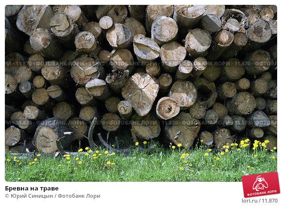 Купить «Бревна на траве», фото № 11870, снято 27 апреля 2018 г. (c) Юрий Синицын / Фотобанк Лори