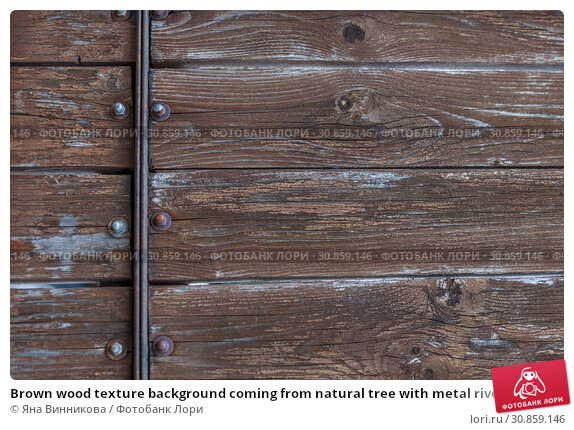 Купить «Brown wood texture background coming from natural tree with metal riveting. Wooden panel with beautiful patterns. Space for your work.», фото № 30859146, снято 1 июня 2019 г. (c) Яна Винникова / Фотобанк Лори