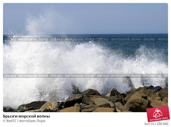 Брызги морской волны, фото № 250942, снято 14 апреля 2008 г. (c) RedTC / Фотобанк Лори