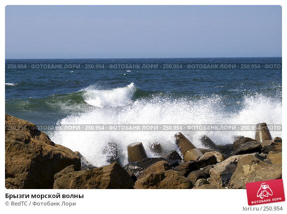 Брызги морской волны, фото № 250954, снято 14 апреля 2008 г. (c) RedTC / Фотобанк Лори
