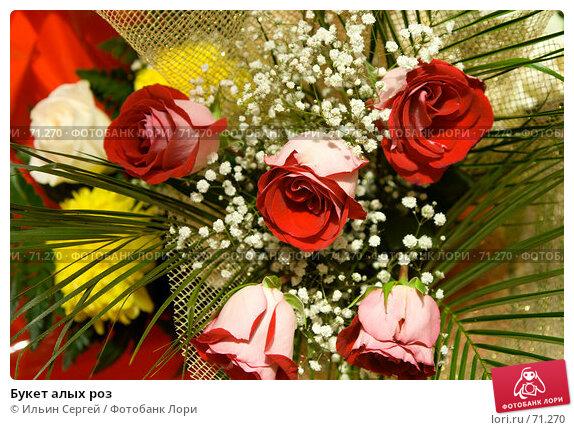 Букет алых роз, фото № 71270, снято 10 августа 2007 г. (c) Ильин Сергей / Фотобанк Лори