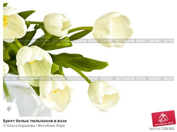 Букет белых тюльпанов в вазе, фото № 228002, снято 8 марта 2008 г. (c) Ольга Хорькова / Фотобанк Лори