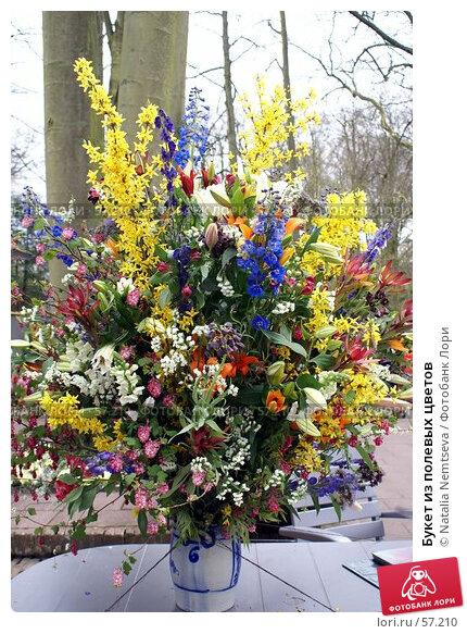 Букет из полевых цветов, эксклюзивное фото № 57210, снято 7 апреля 2007 г. (c) Natalia Nemtseva / Фотобанк Лори