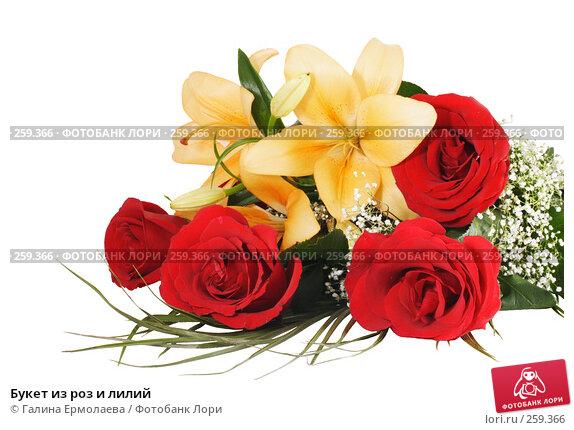 Купить «Букет из роз и лилий», фото № 259366, снято 19 апреля 2008 г. (c) Галина Ермолаева / Фотобанк Лори