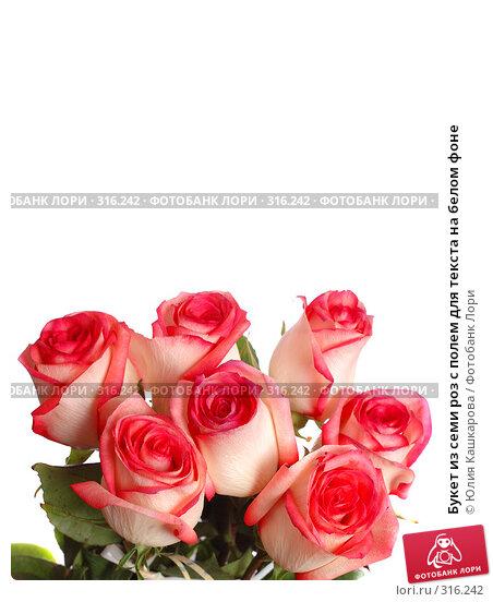 Букет из семи роз с полем для текста на белом фоне, фото № 316242, снято 16 марта 2008 г. (c) Юлия Кашкарова / Фотобанк Лори