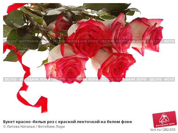 Букет красно -белых роз с красной ленточкой на белом фоне, фото № 282010, снято 22 марта 2008 г. (c) Литова Наталья / Фотобанк Лори