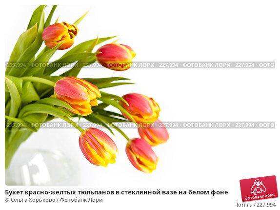 Букет красно-желтых тюльпанов в стеклянной вазе на белом фоне, фото № 227994, снято 8 марта 2008 г. (c) Ольга Хорькова / Фотобанк Лори