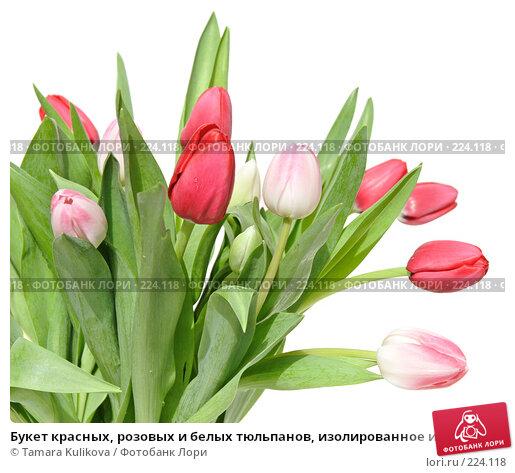 Купить «Букет красных, розовых и белых тюльпанов, изолированное изображение», фото № 224118, снято 15 марта 2008 г. (c) Tamara Kulikova / Фотобанк Лори