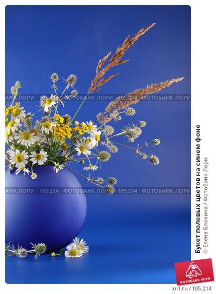 Букет полевых цветов на синем фоне, фото № 105214, снято 30 мая 2017 г. (c) Елена Блохина / Фотобанк Лори