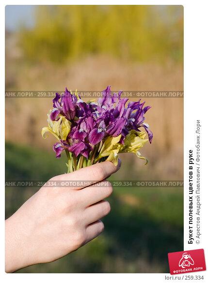 Букет полевых цветов в руке, фото № 259334, снято 12 апреля 2008 г. (c) Арестов Андрей Павлович / Фотобанк Лори