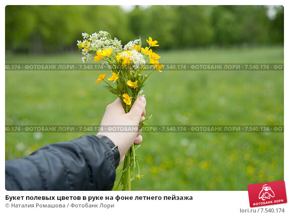 Поиск букет полевых цветов в руках — img 1