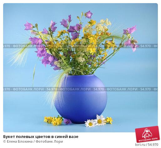 Букет полевых цветов в синей вазе, фото № 54970, снято 22 июня 2007 г. (c) Елена Блохина / Фотобанк Лори