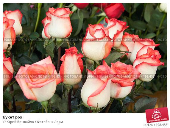 Букет роз, фото № 198438, снято 3 февраля 2008 г. (c) Юрий Брыкайло / Фотобанк Лори