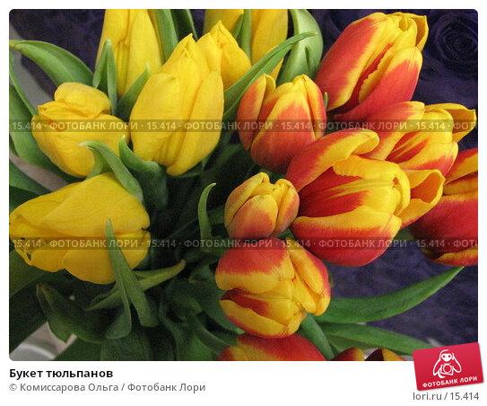 Букет тюльпанов, фото № 15414, снято 19 декабря 2006 г. (c) Комиссарова Ольга / Фотобанк Лори