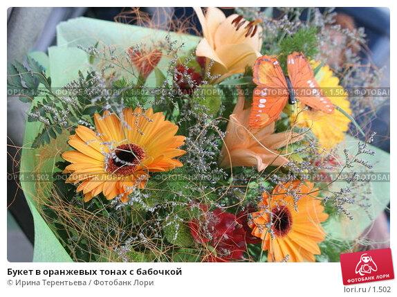 Букет в оранжевых тонах с бабочкой, эксклюзивное фото № 1502, снято 8 октября 2005 г. (c) Ирина Терентьева / Фотобанк Лори