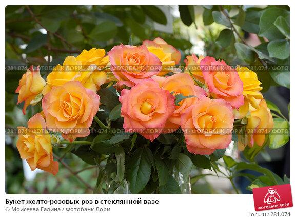 Букет желто-розовых роз в стеклянной вазе, фото № 281074, снято 10 мая 2008 г. (c) Моисеева Галина / Фотобанк Лори
