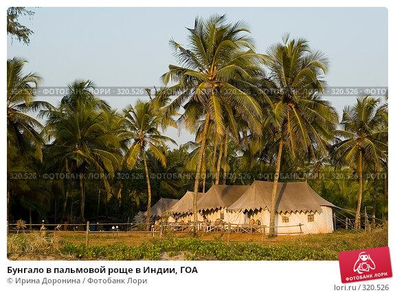 Бунгало в пальмовой роще в Индии, ГОА, фото № 320526, снято 29 декабря 2007 г. (c) Ирина Доронина / Фотобанк Лори