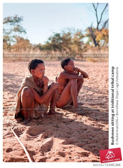 kinship system of the bushmen