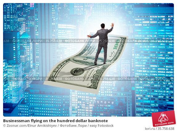 Businessman flying on the hundred dollar banknote. Стоковое фото, фотограф Zoonar.com/Elnur Amikishiyev / easy Fotostock / Фотобанк Лори