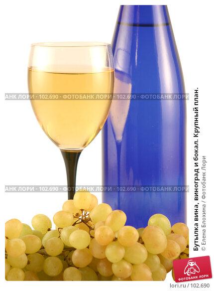 Бутылка вина, виноград и бокал. Крупный план., фото № 102690, снято 26 октября 2016 г. (c) Елена Блохина / Фотобанк Лори