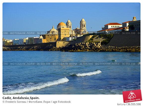 Cadiz, Andalusia,Spain. Стоковое фото, фотограф Frederic Soreau / age Fotostock / Фотобанк Лори