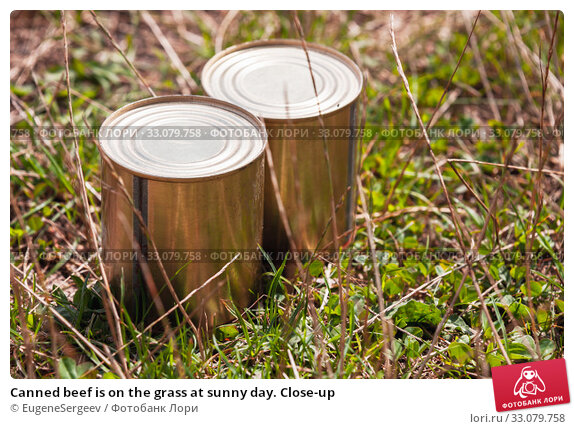 Купить «Canned beef is on the grass at sunny day. Close-up», фото № 33079758, снято 14 июля 2019 г. (c) EugeneSergeev / Фотобанк Лори