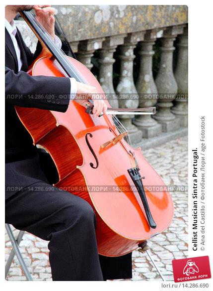 Купить «Cellist Musician Sintra Portugal.», фото № 14286690, снято 14 июля 2013 г. (c) age Fotostock / Фотобанк Лори