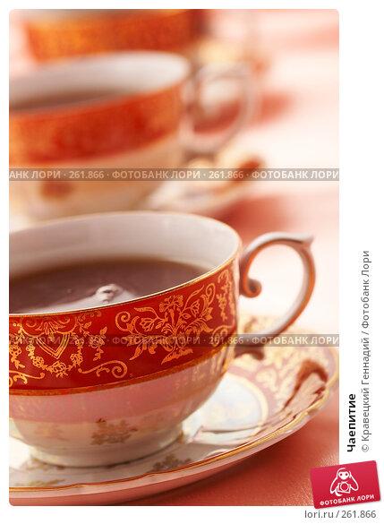 Чаепитие, фото № 261866, снято 5 декабря 2005 г. (c) Кравецкий Геннадий / Фотобанк Лори