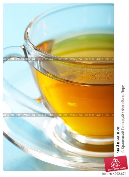 Чай в чашке, фото № 292674, снято 29 июля 2005 г. (c) Кравецкий Геннадий / Фотобанк Лори