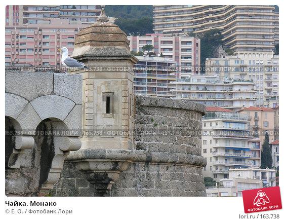 Чайка. Монако, фото № 163738, снято 6 марта 2005 г. (c) Екатерина Овсянникова / Фотобанк Лори